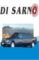 Di Sarno Trips - Deluxe for your excursions by minibus or bus.