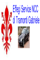 Chauffeur Limousine Rental - Florence.